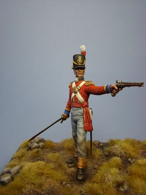 Picture of Waterloo - Officer of Grenadier Guards